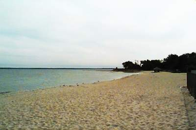 The beach at Greenwich Point Park, Greenwich