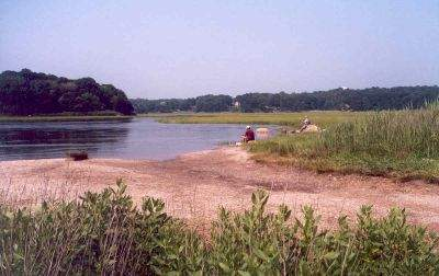 Great Harbor Wildlife Management Area, Guilford