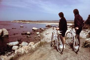 Visitors biking at Hammonasset Beach State Park, Madison