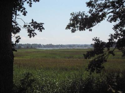 View from Ragged Rock Creek Marsh Overlook