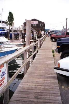 Parking and Dock view at Captain John's Sport Fishing Center, Waterford