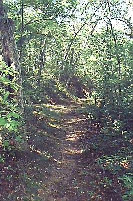 A walking trail at Jordan Mill Park, Waterford