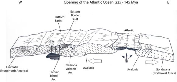 Cross section of Atlantic Ocean opening